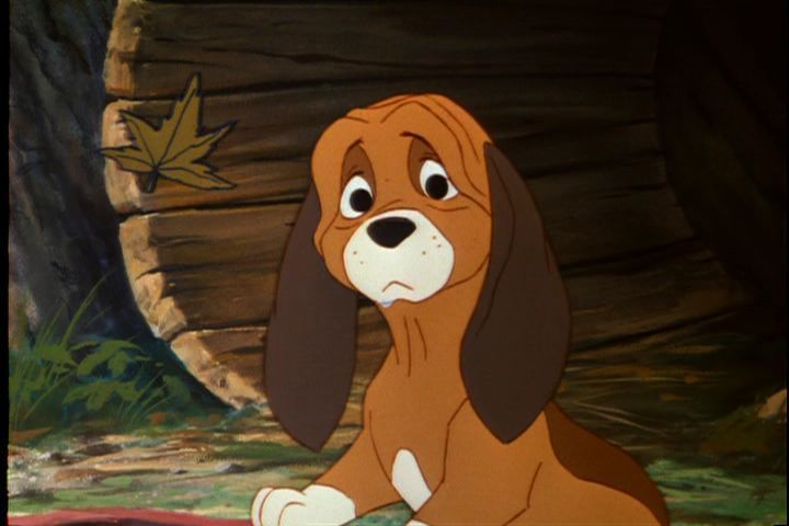 What Are Names Of Dog S In Disney Movies